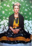 43Br Roma Mostra Frida Kalho 24